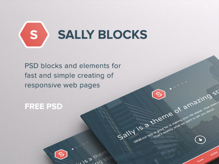 sally blocks kits de ui psd dribbble freebie