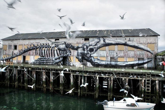 ROA street art graffiti animal bones norway