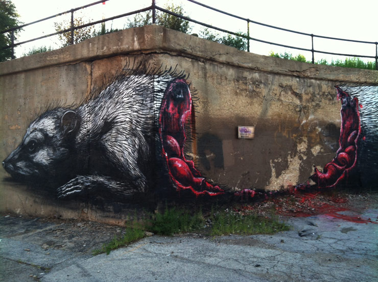 ROA street art graffiti animal open