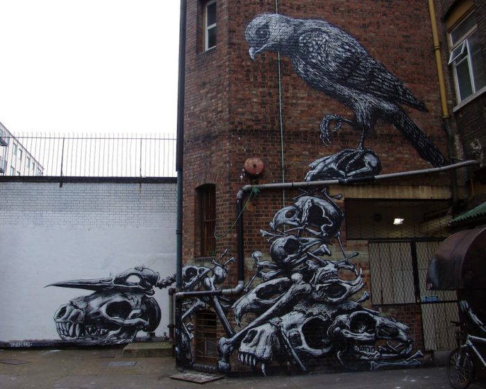 ROA street art graffiti animal bones bird