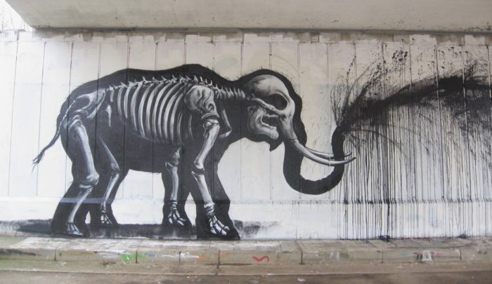 ROA street art graffiti animal bones bones elephant